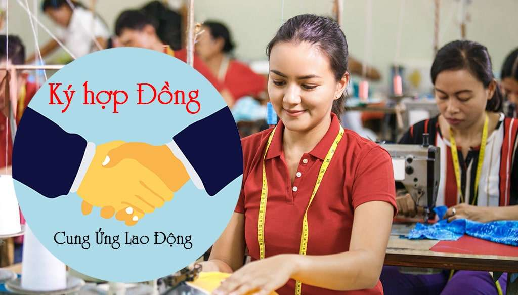cung ung lao dong tphcm